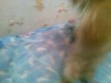 дрисеровка моей собаки